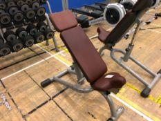 Technogym weights bench