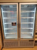 Double door freezer cabinet