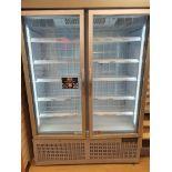 Double door freezer cabinet