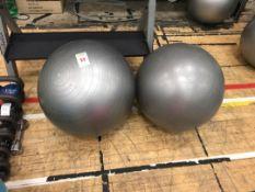Gym balls x2