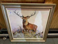 Stag Picture & Frame