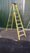 Clow GIFS10 step ladder