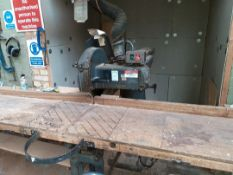 Wadkin Bursgreen radial arm saw