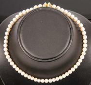 Zeitlos elegante Perlenkette mit extravagantem 750er Gelbgold-Drehverschluss, L