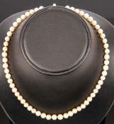 Zeitlose Perlenkette mit 585er Gelb- & Weißgold-Sicherheitsverschluss, dieser m