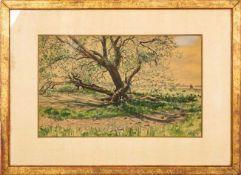 """""""Sommerliche baumbestandene Uferlandschaft"""". Aquarell auf Papier, ca. 27 x 43 c"""