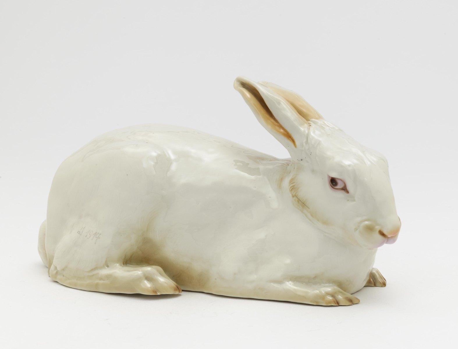 A lying rabbit