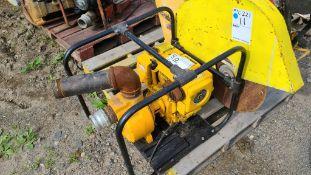 Teel Discharge pump