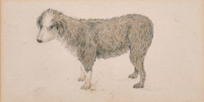 """Joseph Powell (1780-1834) British. Study of a Dog, Watercolour and Pencil, Inscribed verso, 3.35"""""""