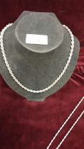 Heavy silver 20 inch rope chain.