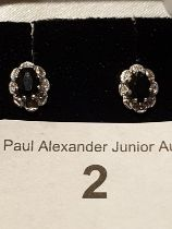Pair of 9ct Gold Sapphire& Diamond Mounted Stud Type Earrings.
