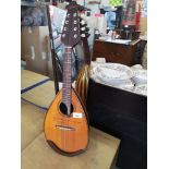 Tanglewood mandolin in very good condition.