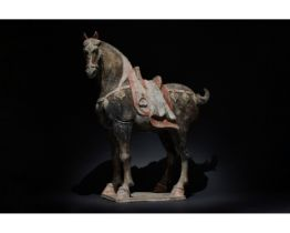 HUGE CHINESE TANG DYNASTY TERRACOTTA HORSE - TL TESTED