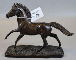 Heredities Ltd Kirk B Stephen West Moorland England study of a bronzed stallion on naturalistic