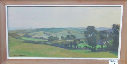 George Chapman (20th Century Welsh), a mid Wales landscape, signed, oils on board. 24 x 50cm approx.