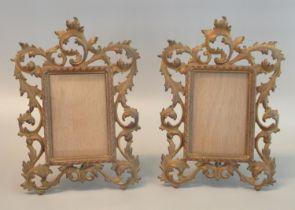 Pair of pierced foliate design gilt brass standing photograph frames with rectangular glazed
