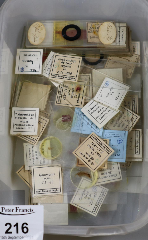 Box containing microscopic scientific slides, to include chick embryo, water flea, etc. (B.P.
