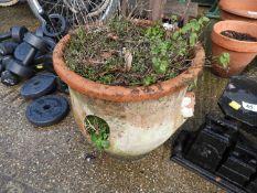 Terracotta Strawberry Planter