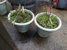 Pair of Glazed Garden Planters