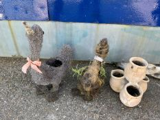 Novelty Garden Planters