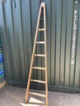 Vintage Orchard Ladder