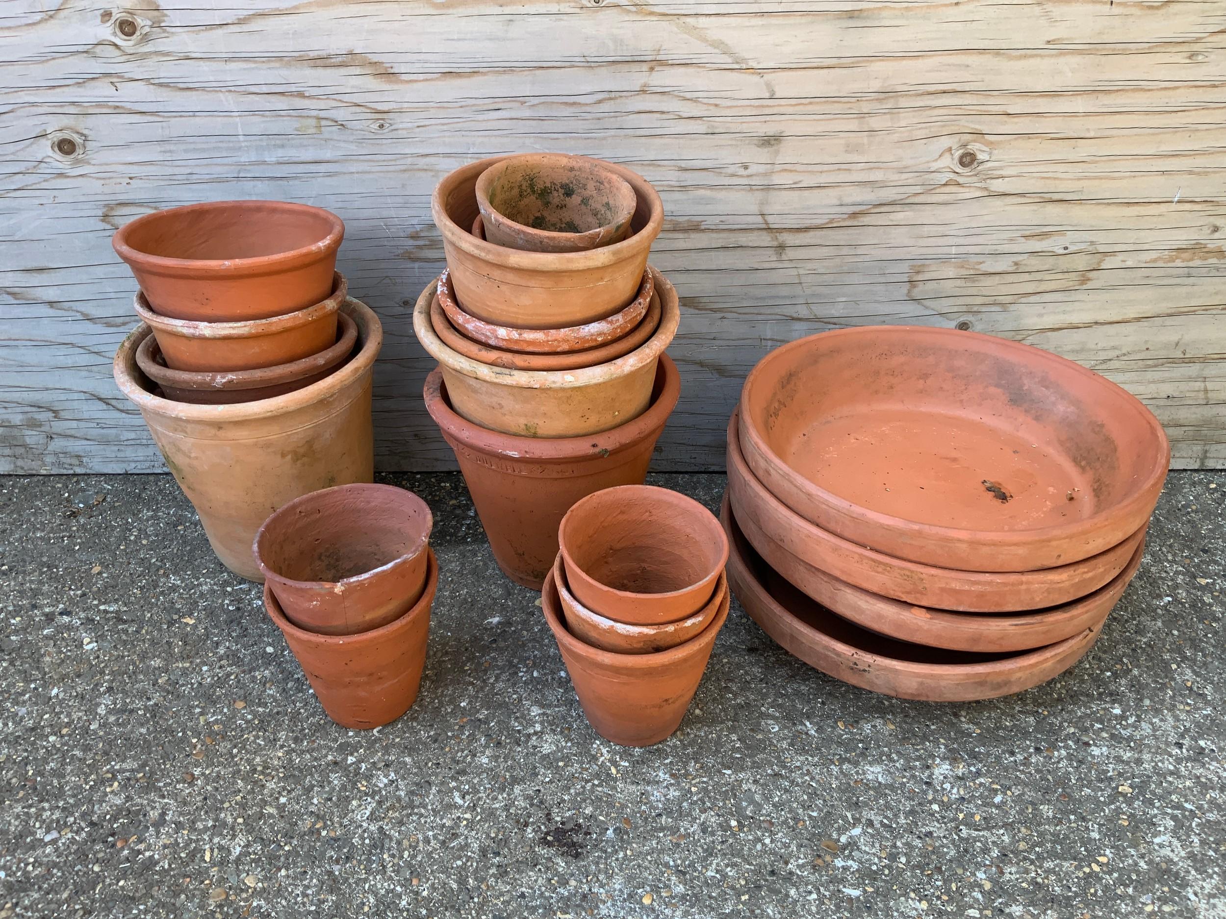 Quantity of Terracotta Pots
