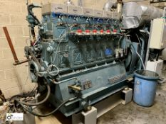 Martins M.C.6V250.TM wood gas fired Generator, serial number 250.017, year 2010, designed to run