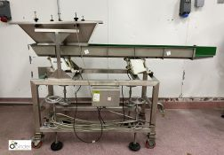 Riley Automation stainless steel mobile Vibratory