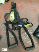 Harness with 2 stirrups