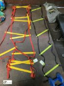 2 various Stepping Ladders