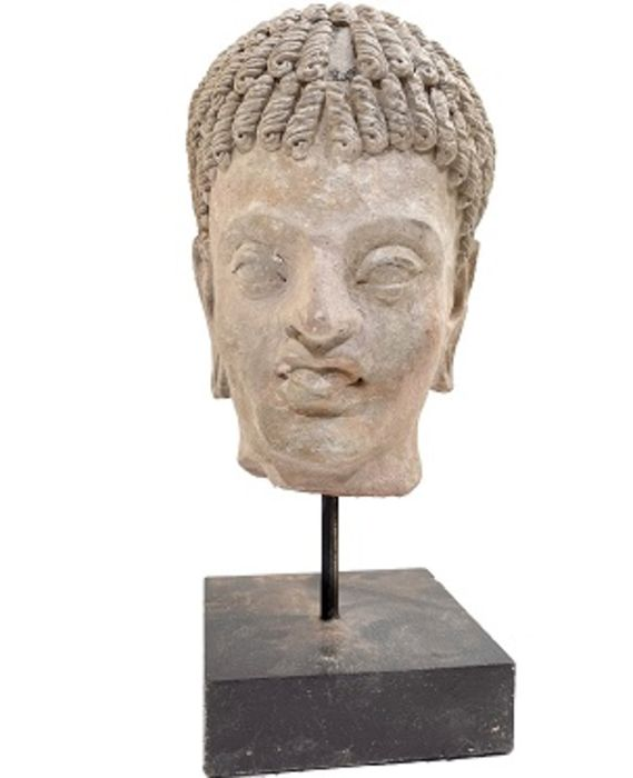 3rd Century Gandhara Stucco Head