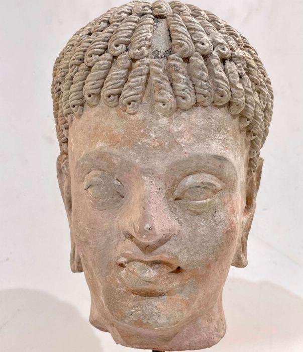3rd Century Gandhara Stucco Head - Image 6 of 6