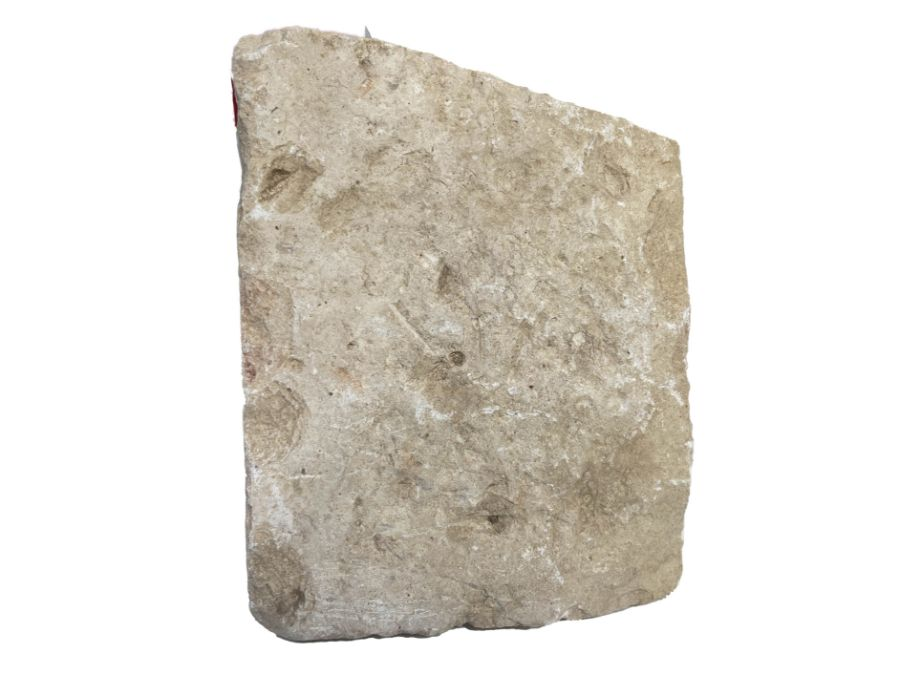 Large Egyptian Hieroglyphic Inscribed Marble Fragment - Image 2 of 3