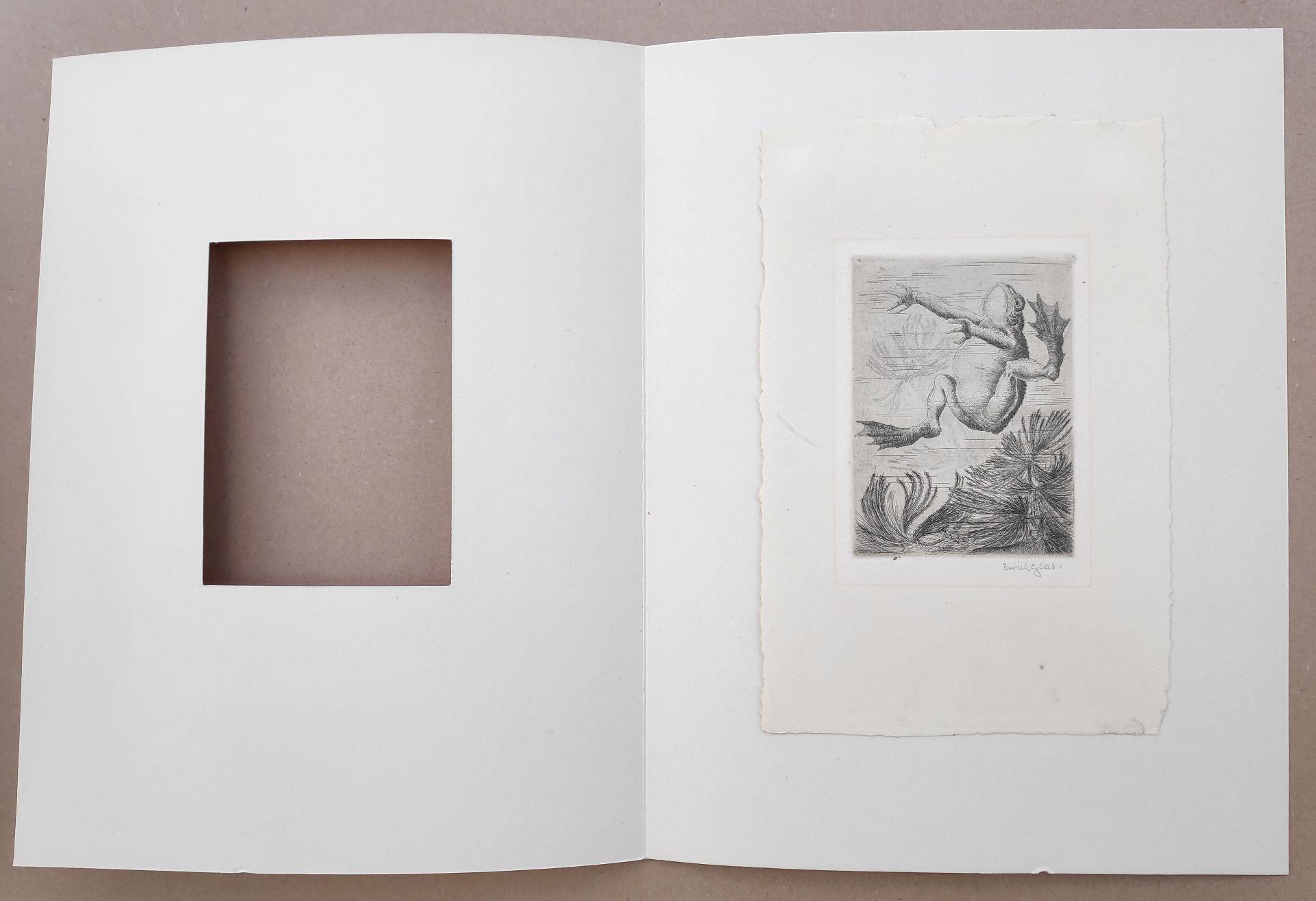 """Glas, Erich (1873 Berlin - 1973 Haifa) """"Jungtiere"""" - Bild 9 aus 9"""