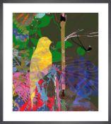 Yellow Shimmer Bird Framed art print by Tiffany Lynch on Matt 250gsm conservation digital paper