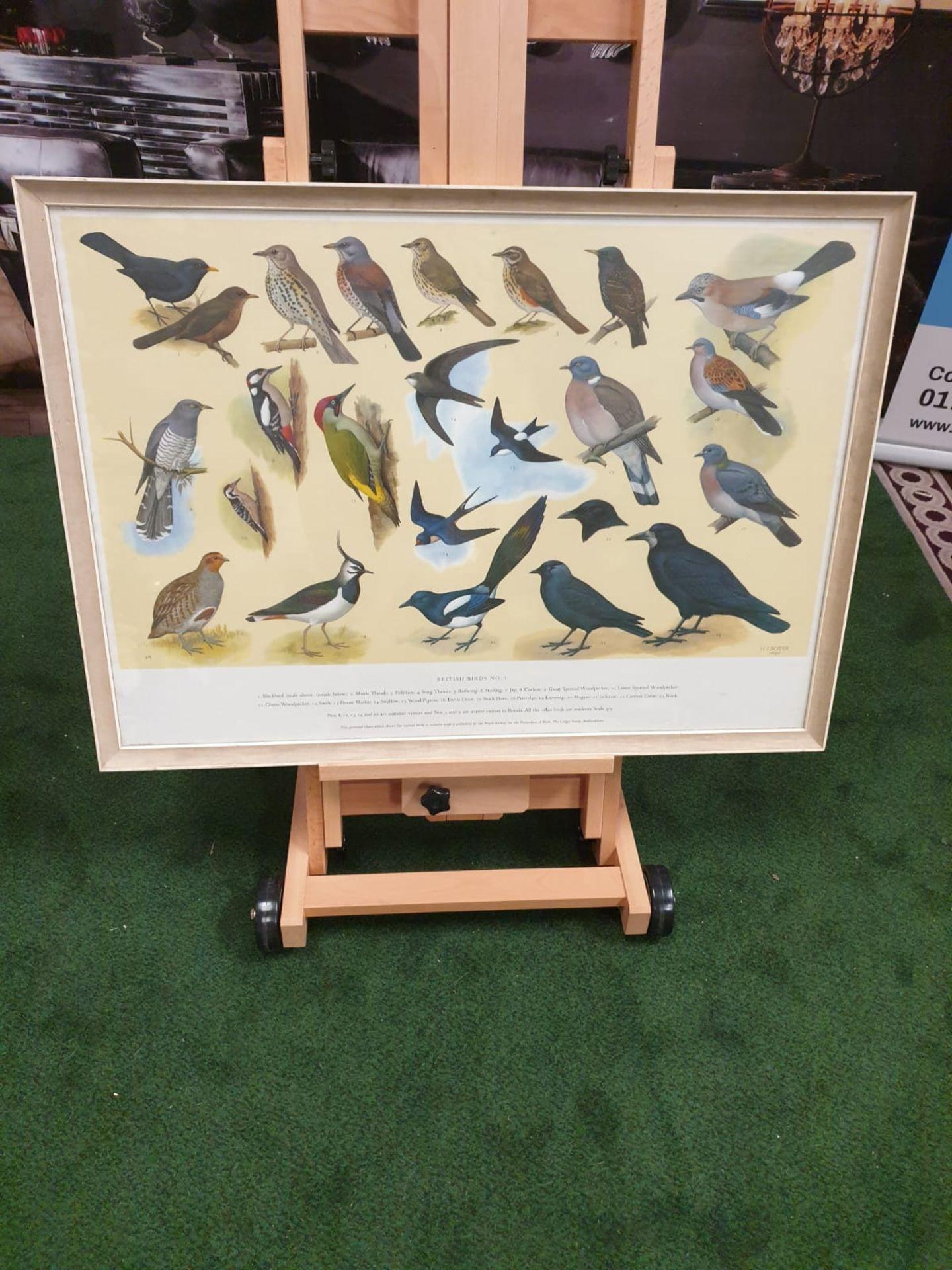 A set of 5 framed series 1 – 5 coloured prints pictorial charts RSPB on British Birds H J Slyper - Image 7 of 7