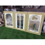 A set of 3 framed Abstract prints in modern Silver frames 49 x 70cm