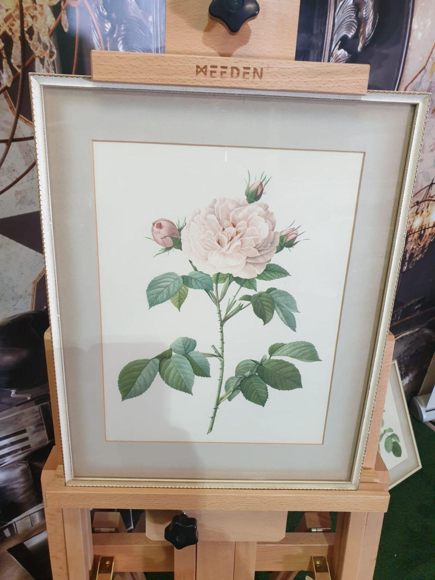 Framed botanical vintage print Rosa alla Regalis Pierre-Joseph Redouté (1759 –1840), was a