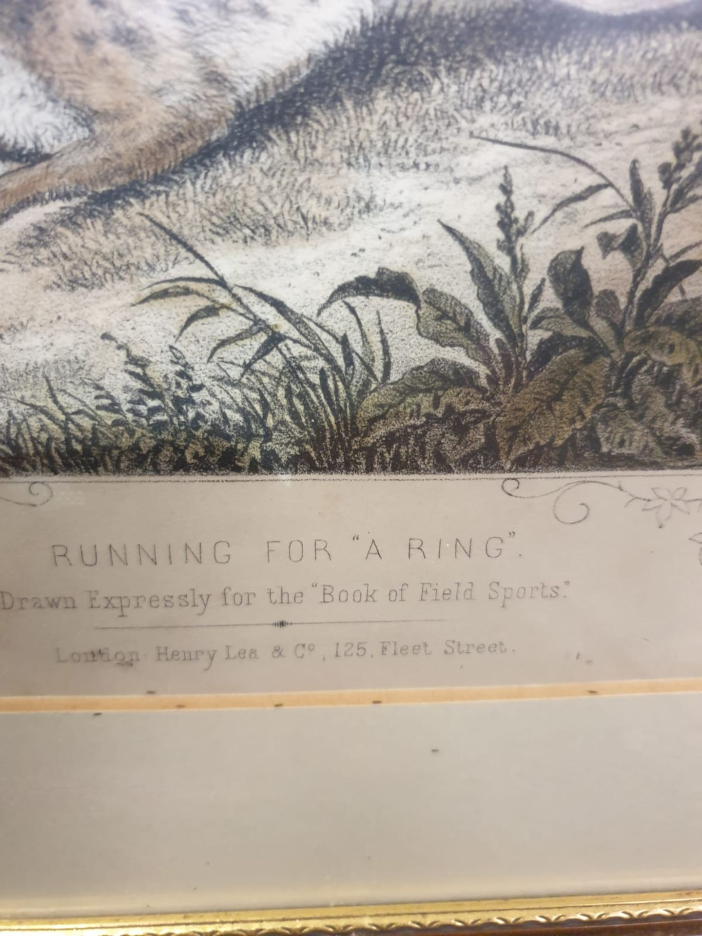 """2 x framed lithographic prints Running for """"A Ring"""" Lithograph, hand coloured, c. 1860. - Image 4 of 6"""