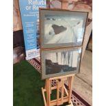 A set of 2 framed modern landscape picrures in frame 56 x 40cm