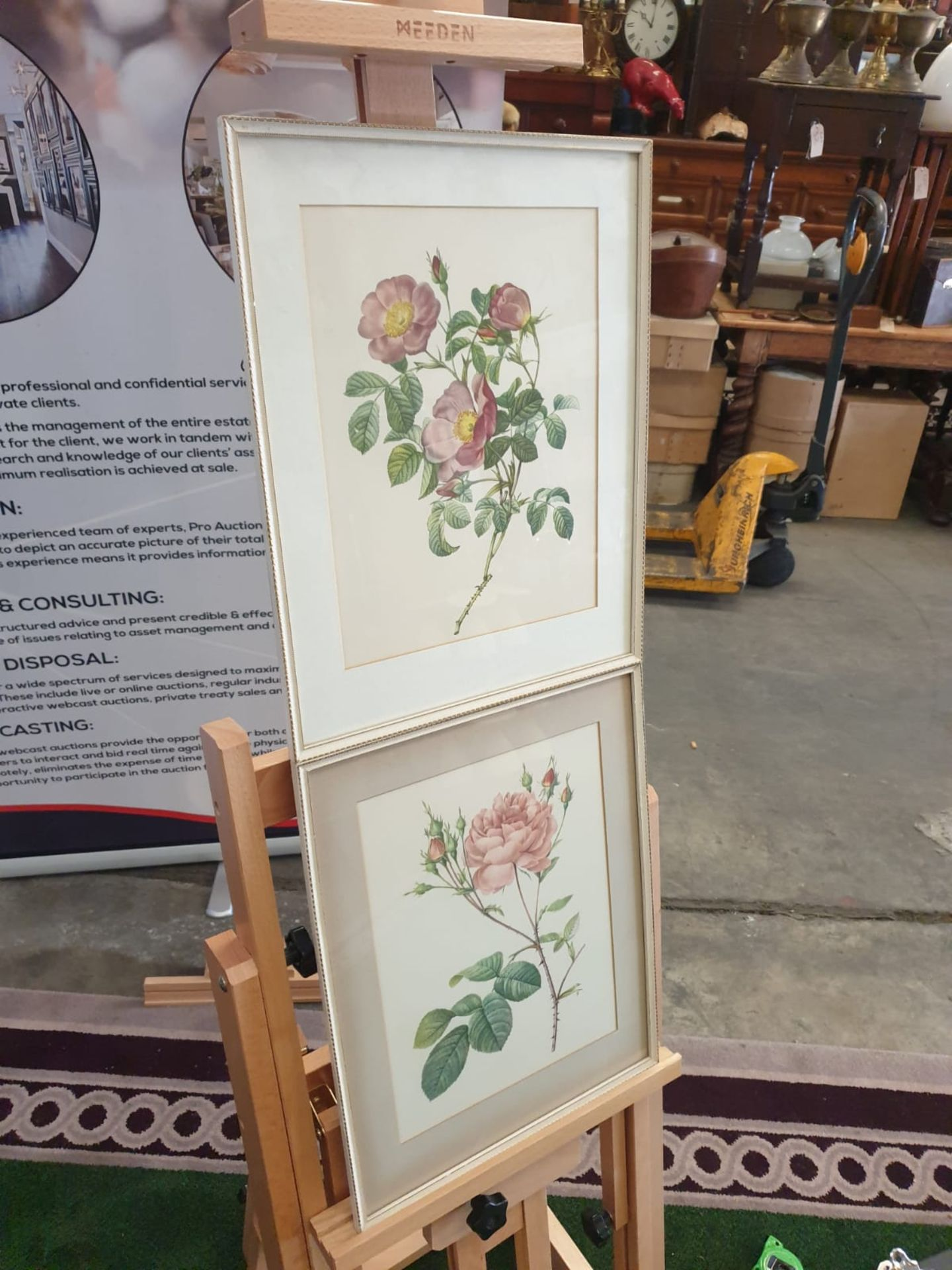 A set of 2 framed coloured prints Rosa Centifolia Anglica Rubra and Rosier de Cumberland by Henry - Image 2 of 3