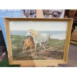 Framed vintage print of a a horse and her foal on a cliff overlooking the sea 60 x 45cm