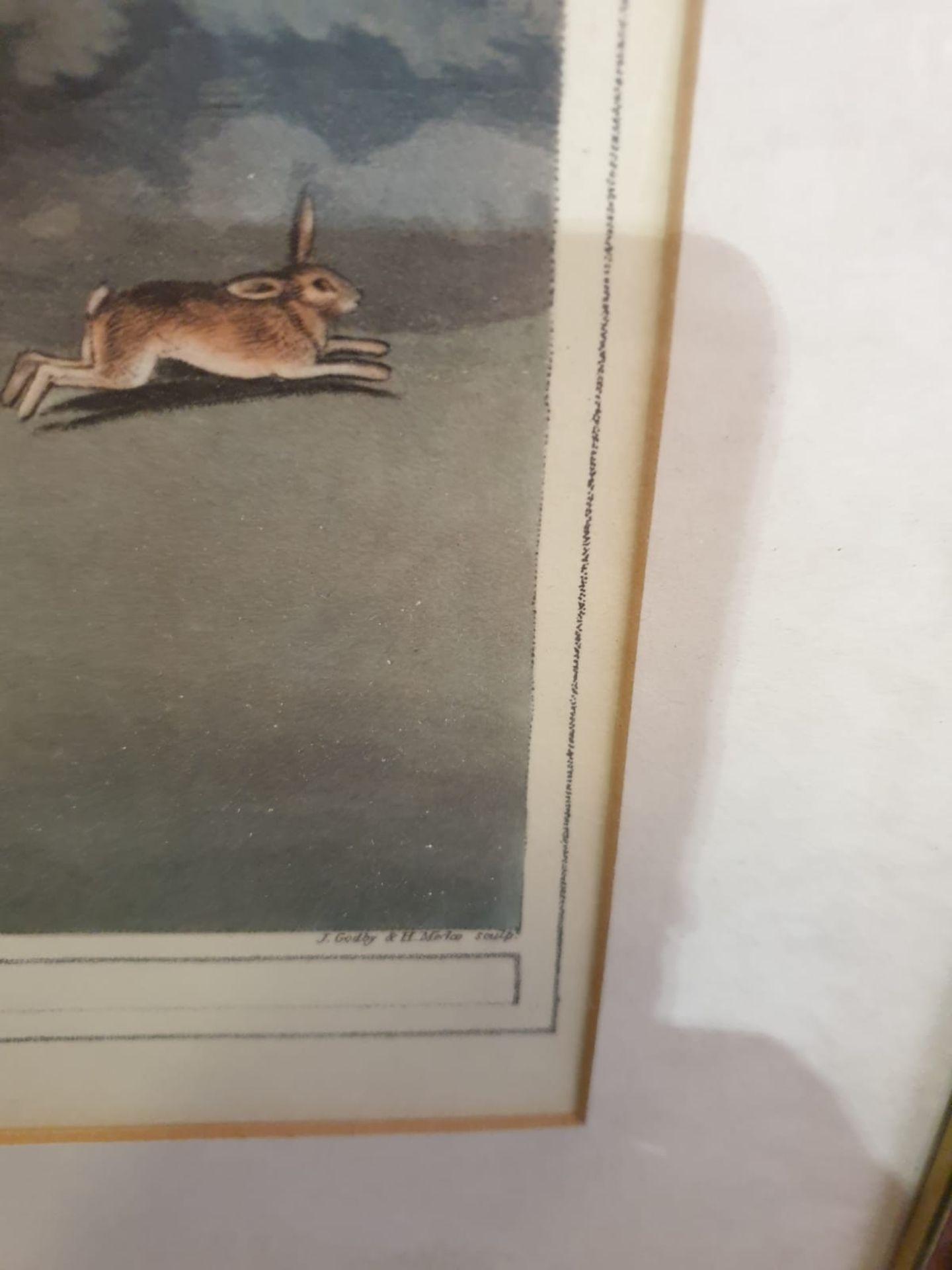Framed Coloured print Hare Hunting 1 La Chasse au Lievre After William Samuel Howitt (1756 – - Image 5 of 6