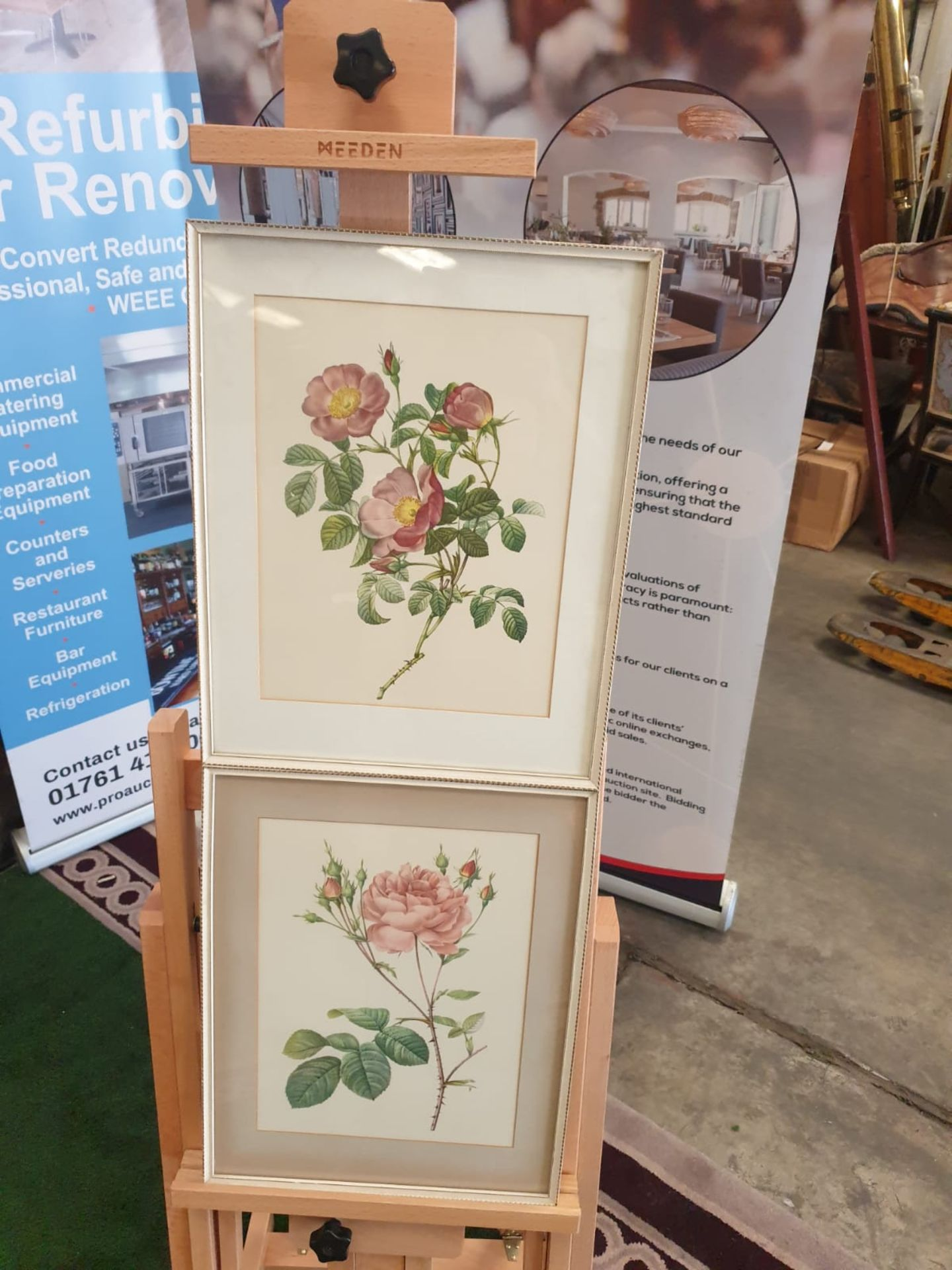 A set of 2 framed coloured prints Rosa Centifolia Anglica Rubra and Rosier de Cumberland by Henry