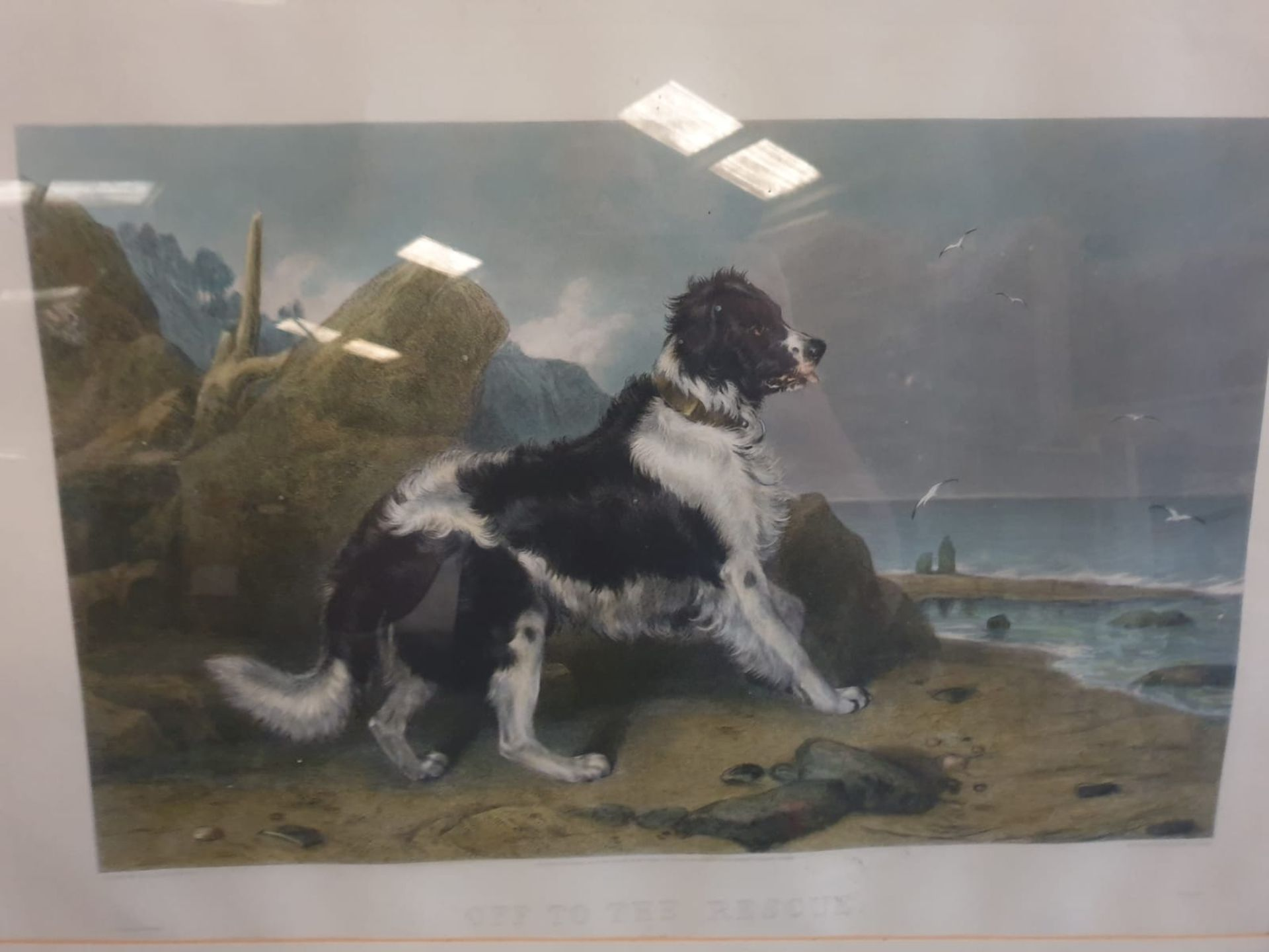 Hand coloured Engraving, Framed LUCAS ALFRED After Sir Edwin Landseer, 'off To The Rescue', 85 x