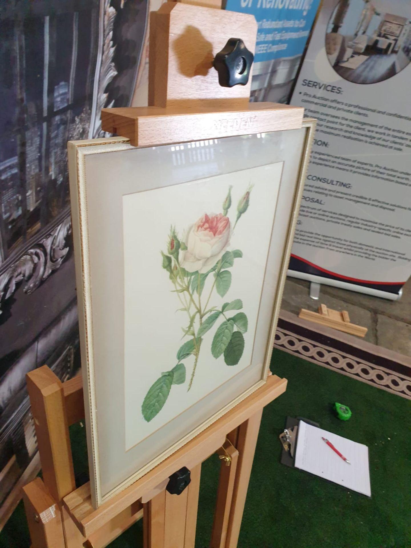 Framed botanical vintage print Pink Rose (Rosa Muscosa Multiplex)-Joseph Redouté (1759 –1840), - Image 2 of 3