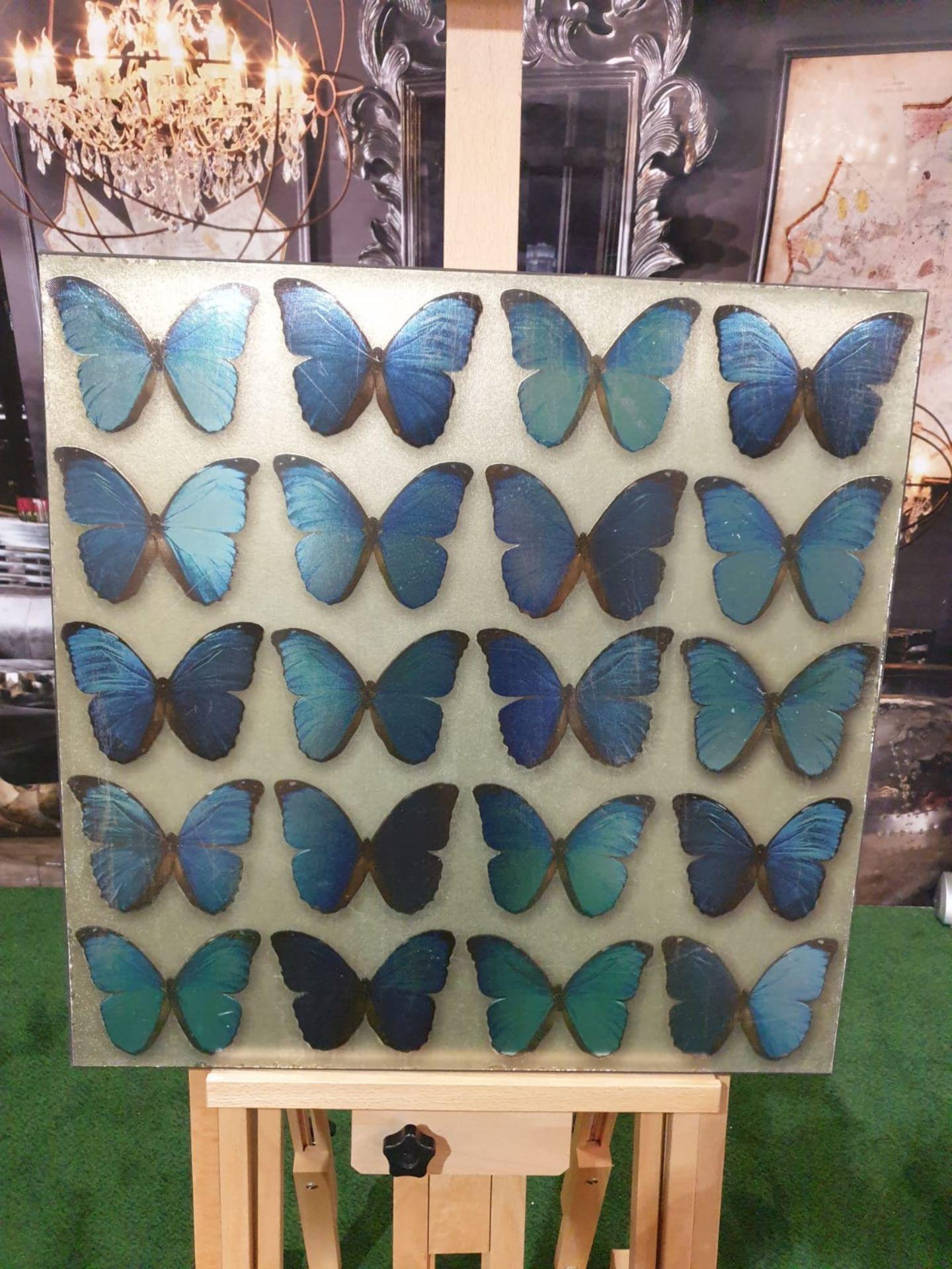 Panel of 20 teal Blue butterflies 57 x 57cm