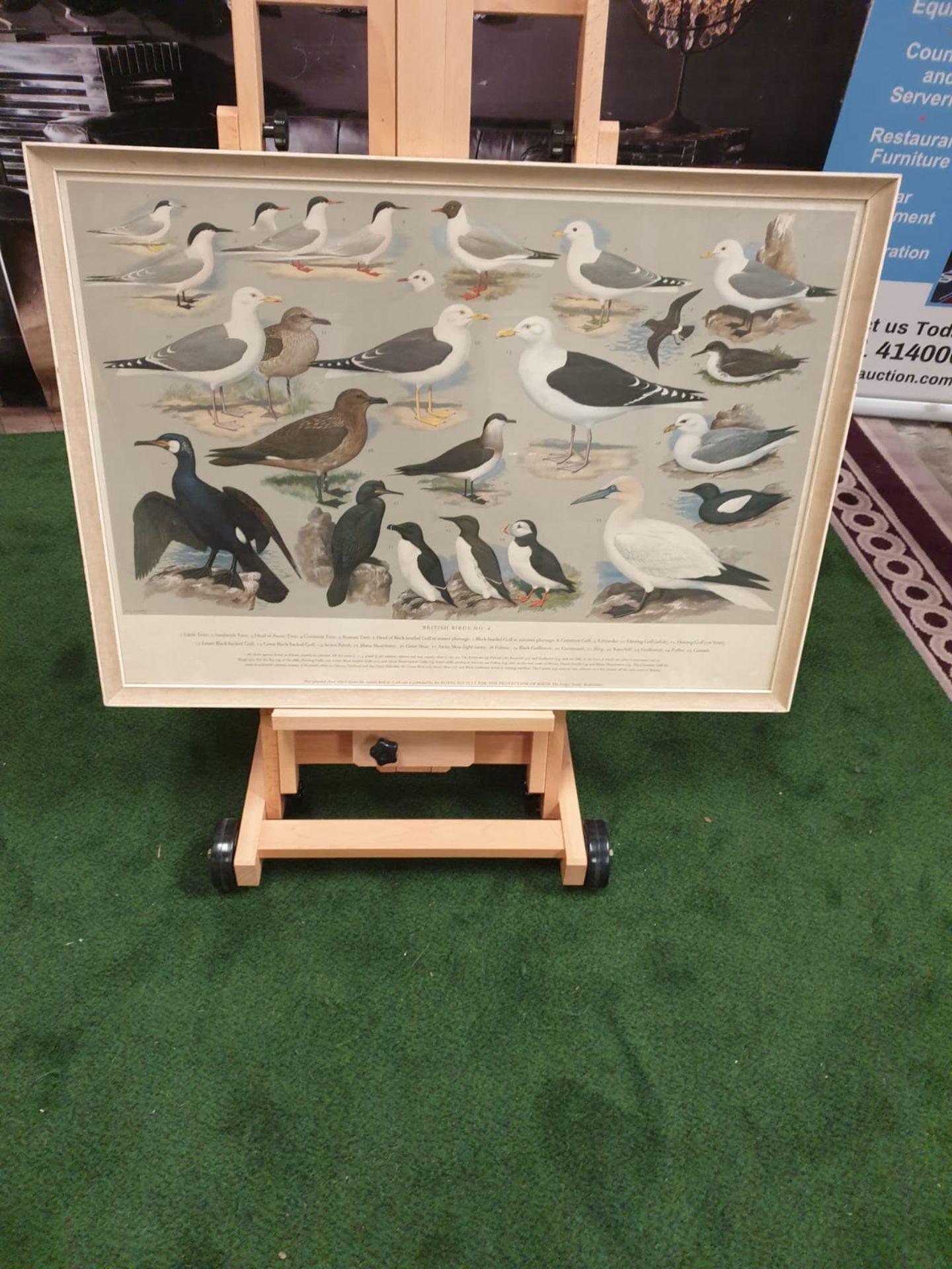 A set of 5 framed series 1 – 5 coloured prints pictorial charts RSPB on British Birds H J Slyper