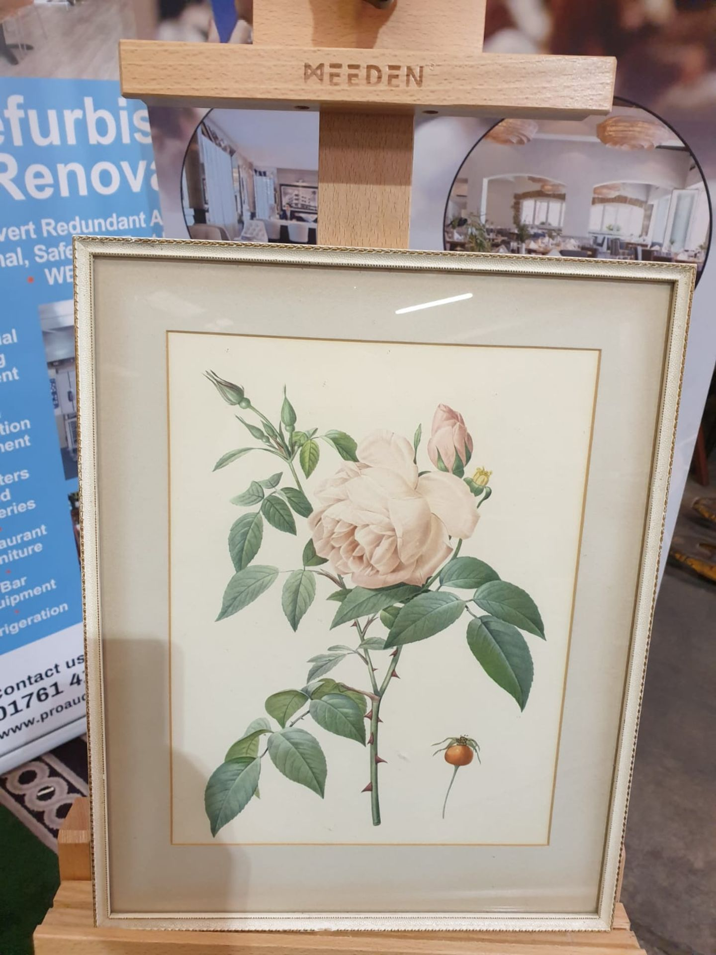 Framed coloured print Rosa Indica Fragrans, engraved by Langlois, published by Remond (coloured - Image 3 of 4