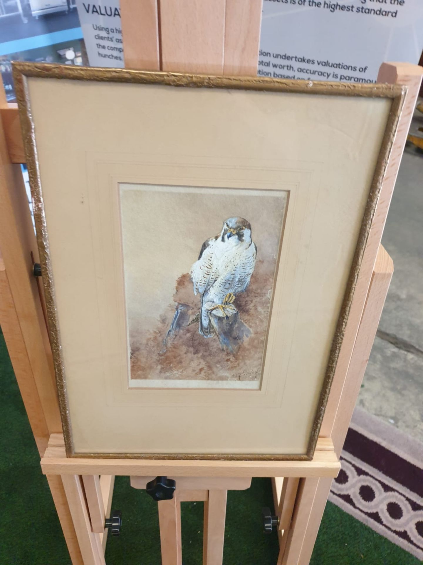 Framed Watercolour William E Powell [British 1878-1955] A Sparrow Hawk on a crag. Watercolour on - Image 2 of 2
